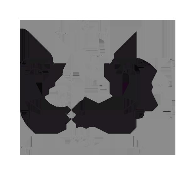 станочный профиль 22.5x11